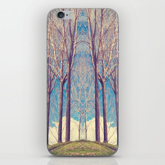 The nature of symmetry  iPhone & iPod Skin