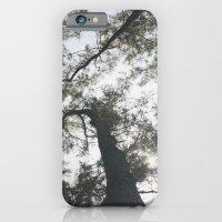 Above iPhone 6 Slim Case