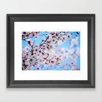 Arboretum Blossoms Framed Art Print