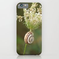 Summersnail iPhone 6 Slim Case