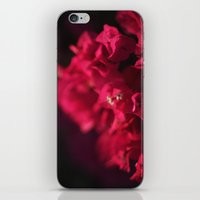 Bougainvillea at Sunset iPhone & iPod Skin