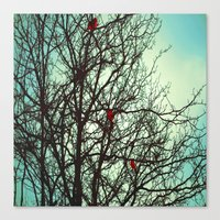 Cardinals in Winter Branches Canvas Print