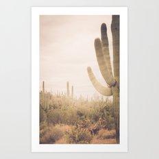 Saguaro Sunrise Art Print