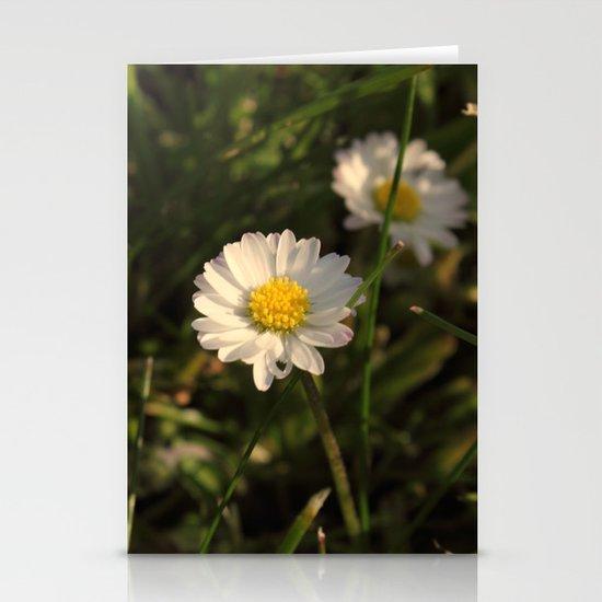 Daisy Daisy Stationery Card