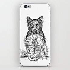 BAT CAT iPhone & iPod Skin