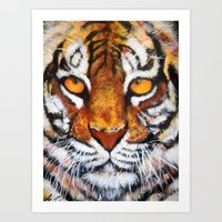 Wildlife Painting Series 4 - Bengal Tiger Art Print