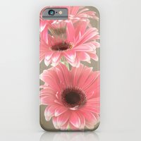 Softly In Pink iPhone 6 Slim Case