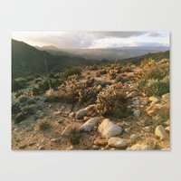 Borrego Desert Sunset Canvas Print