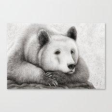Brooding Bear Canvas Print