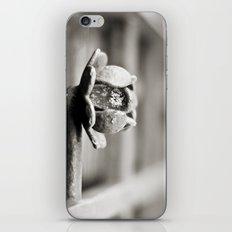 Fence B/W iPhone & iPod Skin