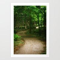 Down A Path Art Print