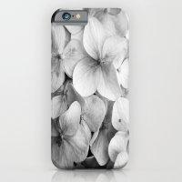 éphémère iPhone 6 Slim Case
