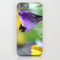 iPhone & iPod Case featuring Bumble Bee on Crocus by Stephie Butler Photography