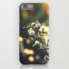 Magical Evenings iPhone 6 Slim Case