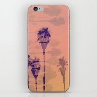 Santa Monica Palms iPhone & iPod Skin