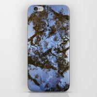 Sungazing Silhouette iPhone & iPod Skin