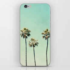 Palm Trees  iPhone & iPod Skin