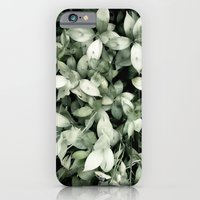 iPhone & iPod Case featuring Plant by Alfredo Lietor