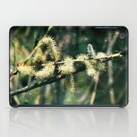 Magical spring iPad Case