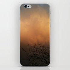 Indulged iPhone & iPod Skin