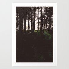 Forest. Art Print