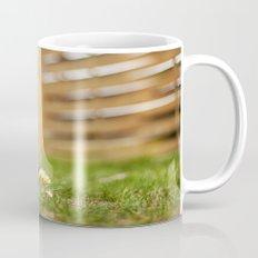 shrunk Mug