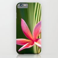 iPhone & iPod Case featuring A Pure World by Sharon Mau