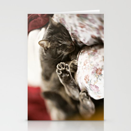 Pancho Stationery Card