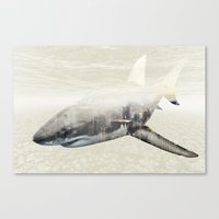 Sharks Of New York Canvas Print