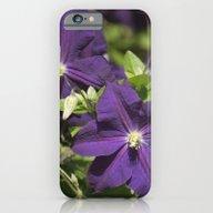 Longwood Gardens - Sprin… iPhone 6 Slim Case