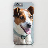 Jack Russell iPhone 6 Slim Case