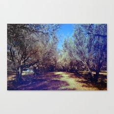 Channel Trees Canvas Print