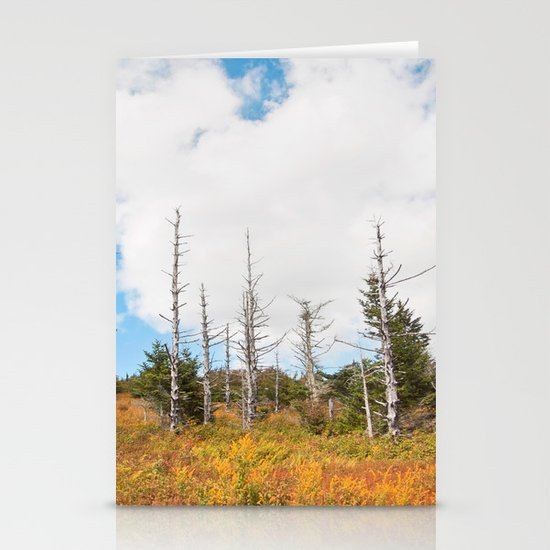 Trees in Mt. Rogers, Virginia Stationery Card