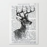 Irish Deer Canvas Print