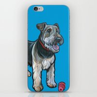 Airedale iPhone & iPod Skin