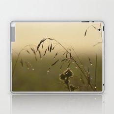Morning Dew Bending Delicate Grass Laptop & iPad Skin