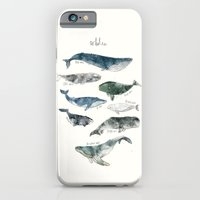 water iPhone & iPod Cases featuring Whales by Amy Hamilton