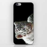 White Tiger Cub iPhone & iPod Skin