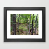 DEEP WOODS AUTUMN (Whiting Road Nature Preserve, Webster, NY) Framed Art Print