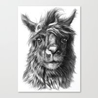 Cute Llama G2013-068 Canvas Print