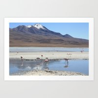 Flamingo lagoon Art Print