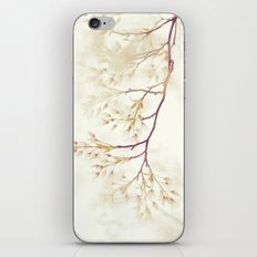 Soft Spring Whisper iPhone & iPod Skin