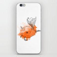 Goldfish iPhone & iPod Skin