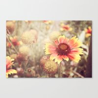 Memories Of Old Canvas Print
