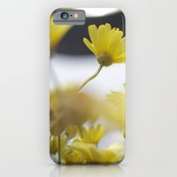 iPhone & iPod Case featuring yellow daisies by redlinedesign®