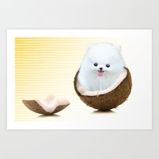 coconutty Art Print