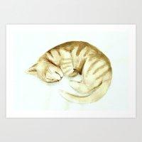 Sleeping Kitty Art Print