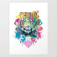 Tiger Splash Art Print