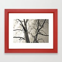 Majesty Framed Art Print