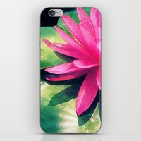 Waterlily iPhone & iPod Skin